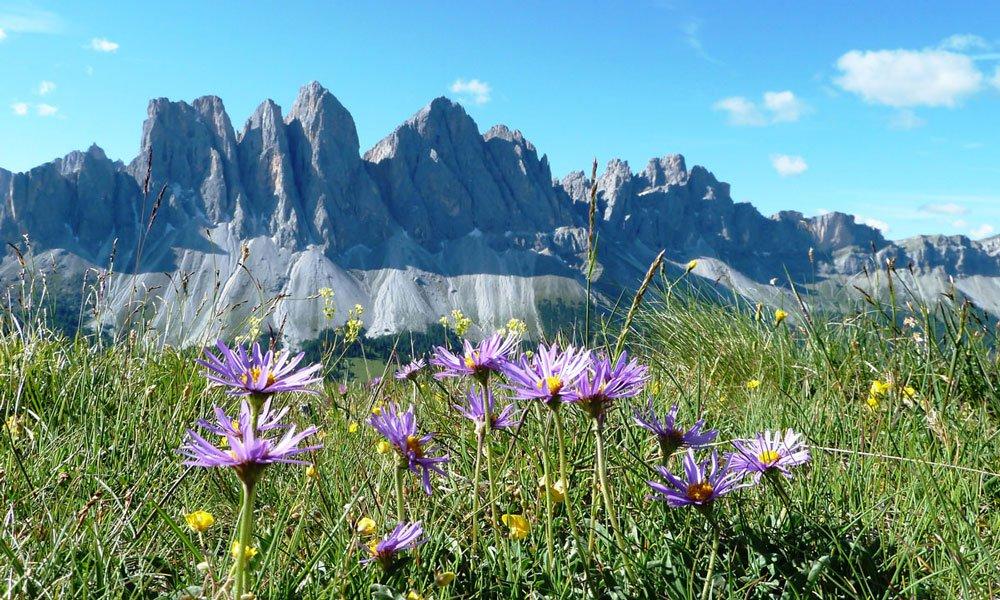 Natururlaub Südtirol – Urlaub in der Natur