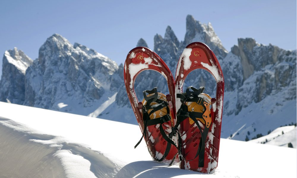 Discover the alpine landscape on snowshoes